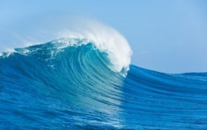 Harnessing the Power of the Ocean to Generate Renewable Energy