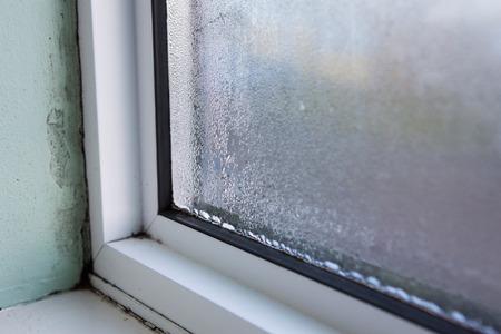 mold on and around windows